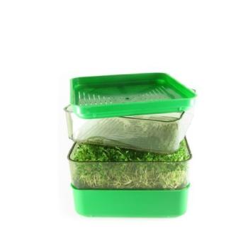 Bergs Bio Salad - Keimgerät - quadratisch,...