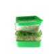 Bergs Bio Salad - Keimgerät - quadratisch, praktisch, wasserdicht