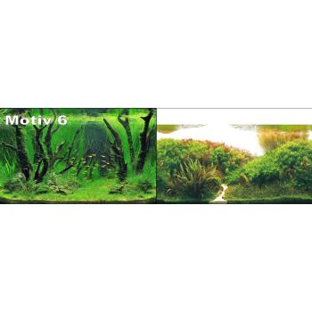 Foto Rückwand Nr. 6 - 120 x 50 cm