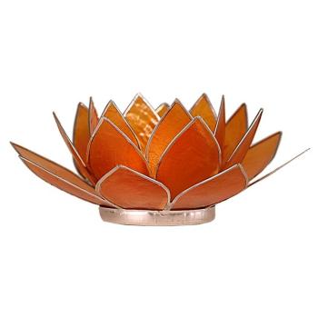 Davartis - Capiz-Muschel - Lotus Chakra Licht /...