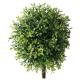 2er Set - Topfpflanze Buchsbaum, künstlich
