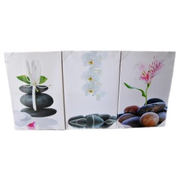 3-Set Bilder - Blumen - Wandbild auf Echtholz-Keilrahmen