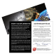 Meteorit 12g-15g [groß] mit Infokarte & Zertifikat