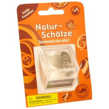 Naturschätze - Lupendose Nautiloid - Fossilien